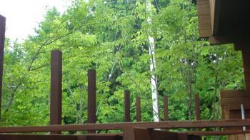 デッキ上のフェンス柱